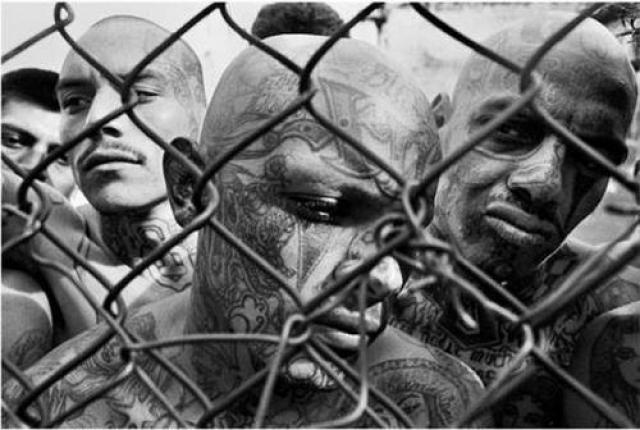 Мексиканская мафия была создана в конце 50-х членами уличной банды мексиканцев, заключенных в тюрьме Дьюэл, расположенной в городе Трайси, Калифорния.