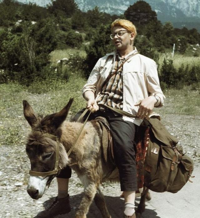 В начале фильма появился Шурик на осле. Ослица Люся появилась на свет в 1948 году. Средняя продолжительность жизни этих животных – 30-40 лет.