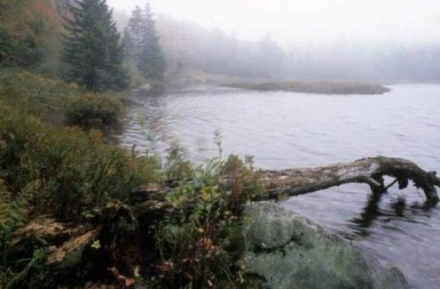 Беннингтонский треугольник Еще один таинственный треугольник находился в юго-западном Вермонте, и в нем были зарегистрированы 5 таинственных исчезновений в период 1945-1950 годов. 12 ноября 1945 года 75-летний Миди Риверс вел группу охотников. На обратном пути проводник пошел впереди от группы, после чего его никогда больше не видели.