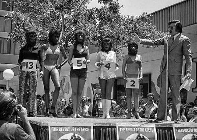 """Мисс красивая обезьяна В июне 1972 года человек по имени Гари Оуэнс организовал конкурс с названием """"мисс красивая обезьяна"""". Все это было организовано не просто так, а в качестве рекламной акции к фильму """"Планета обезьян""""."""