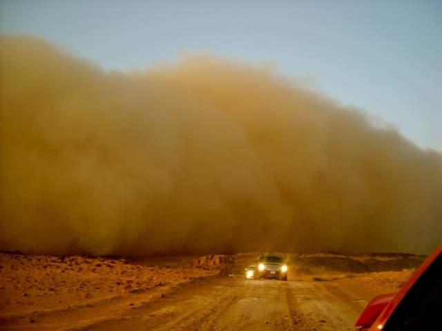 Из пустыни Сахары в бассейн Нила ежегодно переносится не менее чем сорок миллионов тонн песка и пыли.