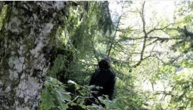 Дети слишком напуганы, чтобы играть в этих местах, хотя человек вроде бы не представляет никакой угрозы. Однажды люди видели как он нес в лес подобие цветов. По словам представителей местных властей, они не могут заставить человека покинуть лес, пока он не сделал ничего противозаконного.