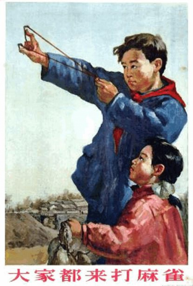 Призывы на борьбу с птицами рисовали на огромном количестве агит-плакатов и листовок.