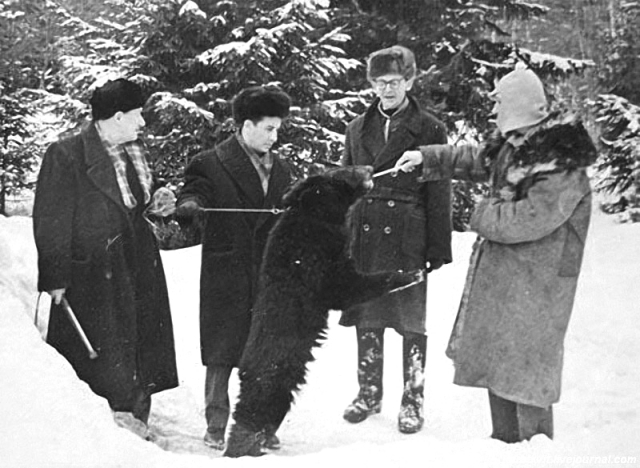 Самогонщики (1961)