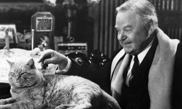 В качестве дрессировщика был взят Фрэнк Инн, который сразу же купил права на кота у миссис Мюррей - кот мог вернуться домой к Мюррей после съемок фильма, но Инн получал эксклюзивное право на дрессировку Оранджи в кино.