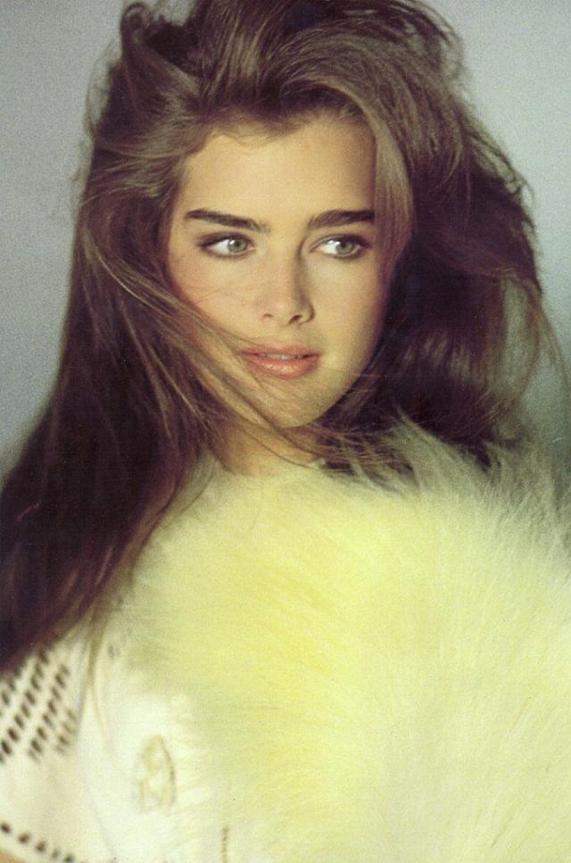 """К 16 годам Шилдс стала одной из самых узнаваемых моделей в мире. Журнал """"Time"""" от 9 февраля 1981 сообщал, что ее дневной заработок составлял 10 000 $. В 1983 Шилдс появилась на обложке сентябрьского Paris Vogue, в октябре и ноябре — американского Vogue и декабрьского выпуска итальянской версии журнала."""