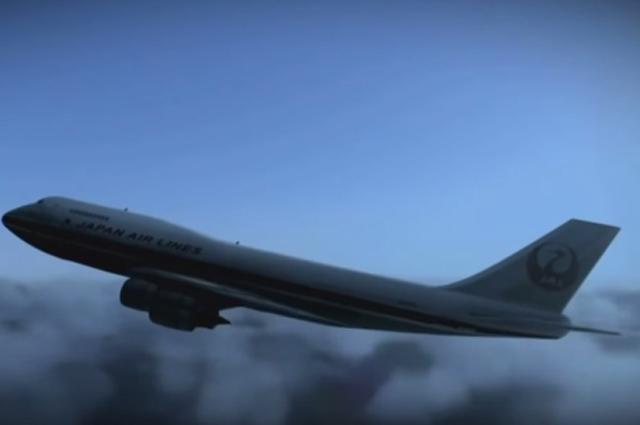 """Первый полет совершил 28 января 1974 года, а 19 февраля того же года был передан авиакомпании Japan Airlines и на день катастрофы совершил 18835 циклов """"взлет-посадка"""" и налетал 25030 часов."""