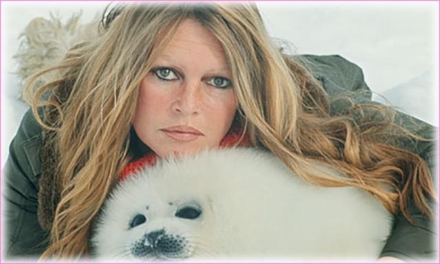 В 1973 году, незадолго до своего сорокалетия Бардо объявила о завершении кинематографической карьеры и в дальнейшем посвятила свою жизнь борьбе за благосостояние животных.