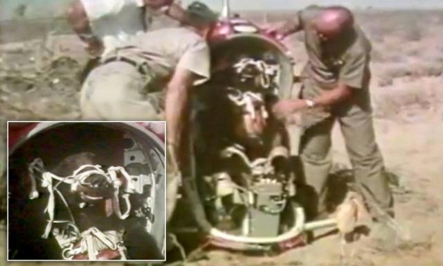 Две недели спустя другой медведь, Большой Джон , был катапультирован на высоте 15 километров, скорость самолета составляла 1600 км/ч.