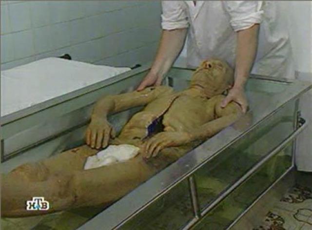 Кроме этого, постоянно за телом Владимира Ильича присматривают 12 ученых из Всероссийского научно-исследовательского института лекарственных и ароматических растений (ВИЛАР), дважды в неделю навещая покойного.