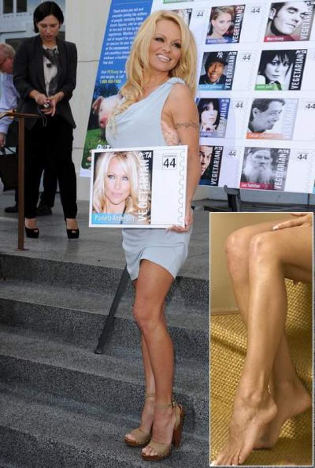 Памела Андерсон : 42 размер ноги Ноги секс-символа начали приковывать к себе внимание очень давно. Ведь и правда, при росте в 162 см- 42 размер ноги очень бросается в глаза.