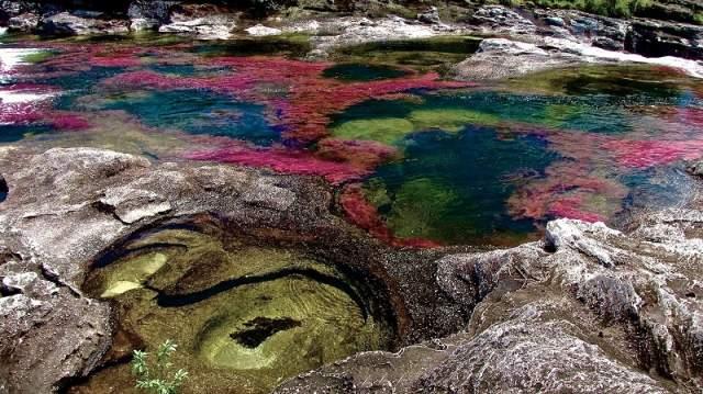 Река пяти цветов, Колумбия. Большую часть года река Каньо-Кристалес выглядит так же, как и любая другая, но летом она превращается в разноцветную мозаику.