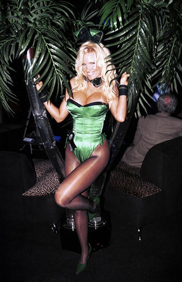Тина Мари Джордан - модель с классической внешностью девушки Playboy.