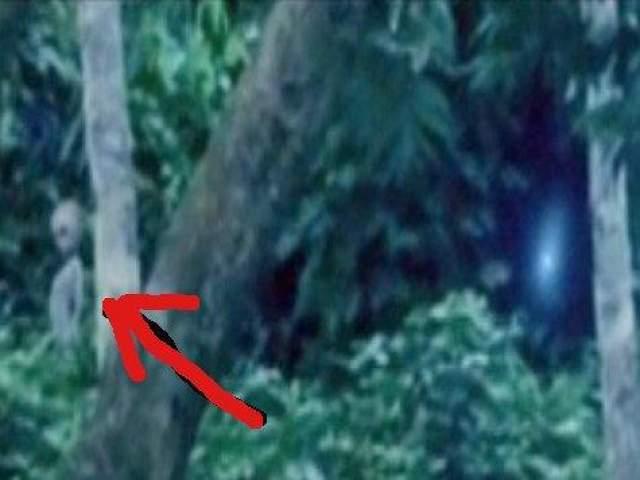 По словам уфолога, в районе Манаус, где был сделан снимок, случаи появления НЛО были зафиксированы и ранее.