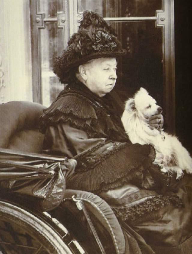 Мальчик по имени Джон Уильям Бин решил отомстить за честь Флоры Гастингс: взял у отца пистолет и зарядил его комком бумаги, чтобы убить королеву. В Сент-Джеймсском парке Вестминстера Бин выстрелил в королеву. Разумеется, она осталась невредимой, но была ошарашена.