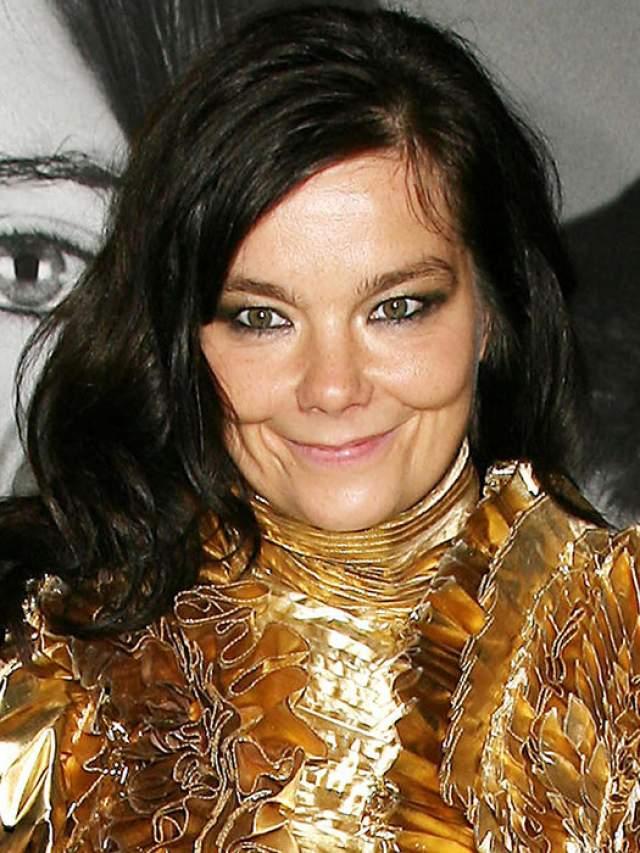Бьорк Гудмундсдоттир. Актриса, певица и общественный деятель, родившаяся в Исландии, похожа на эльфа.