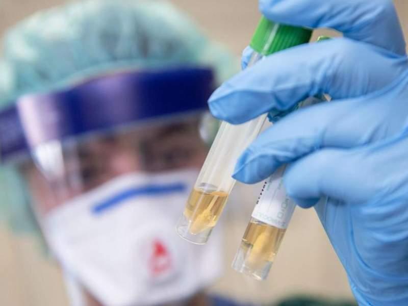 Новости дня: Российские клиники устроили лжедиагностику коронавируса