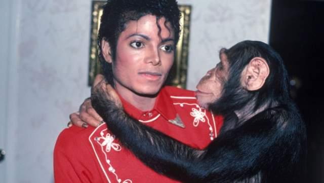 Также крупные суммы исполнитель передал в благотворительные фонды, но в какие и в каком размере - прессе не сообщили. Кроме того, своему шимпанзе Бабблзу музыкант завещал 2 млн долларов, а вот родному отцу - ни цента.