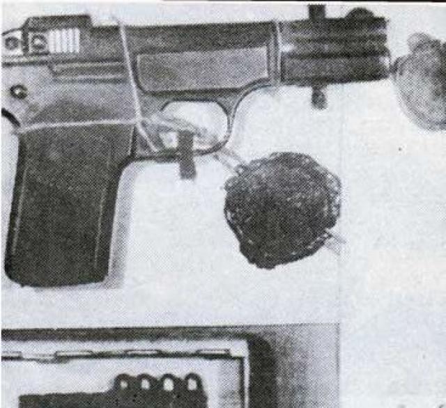 Соглacнo этой гипотезe, пули, извлеченные из тела Ленина, якобы, не соответствовали патронам к системе пистолета, из которого стреляла Каплан, а у самой Фанни было настолько плохое зрение, что она не попала бы в Ильича.