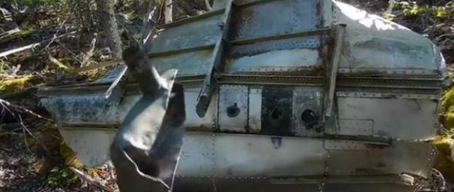 Такое разрушение могло произойти при резком повышении давления в салоне, приведшее к разрушению силовой конструкции в зоне очага высокого давления и последующим разрушением самолета от взрывной декомпрессии.