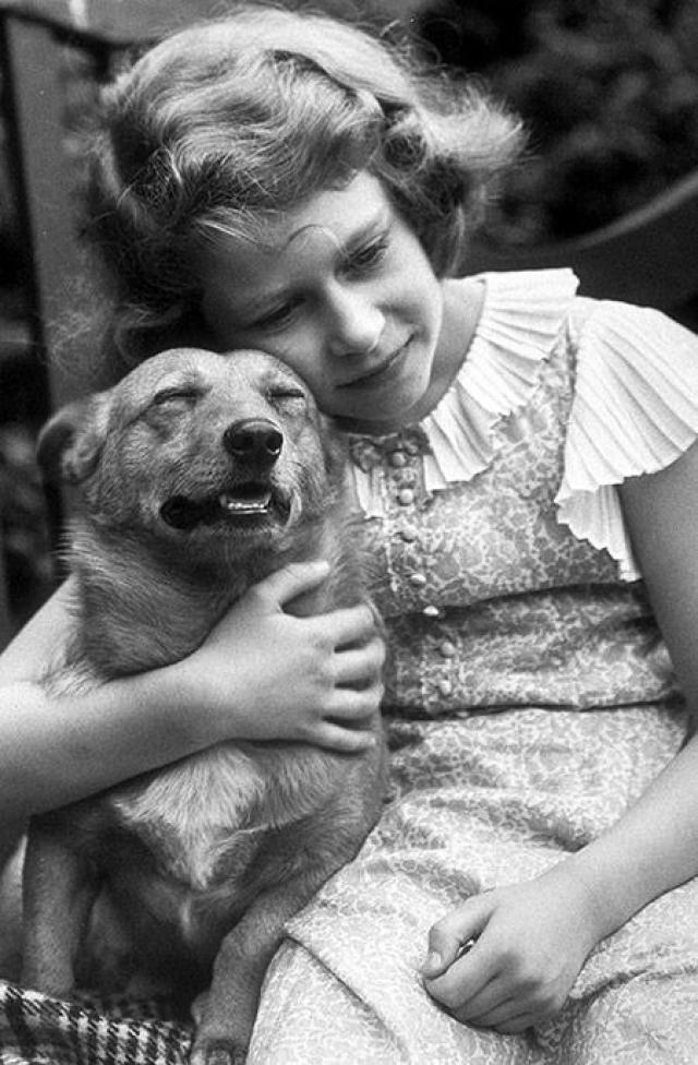 Елизавета II обожает собак Ее любимая порода - вельш корги. Первого щенка ей подарил отец на день рождения, с тех пор у нее было больше 30 корги, каждый из которых является потомком ее первенца - Сюзи. Собаки живут с королевой в замке, путешествуют в лимузинах и живут в гостиницах.