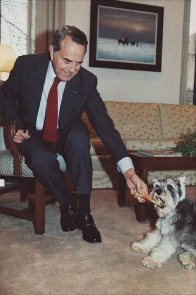 Оба раза потерпел поражение от демократов (первый раз вице-президентом был избран Уолтер Мондейл при избранном президенте Джимми Картере, второй раз - на второй срок переизбран действующий президент Билл Клинтон). На выборах 1996 года стал старейшим политиком, выдвинутым на пост президента впервые. Его намерение сократить налоги и урезать социальные программы было воспринято избирателями отрицательно, и лишь упростило Клинтону кампанию, в коллегии выборщиков Клинтон набрал на 220 голосов больше.