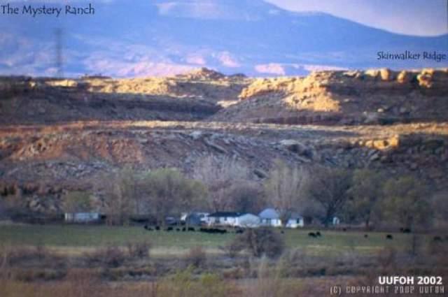 Хотя таинственные события начали регистрироваться еще с 50-ых годов, одни из самых странных историй произошли с парой владельцев ранчо по имени Терри и Гвен Шерман после того как они купили это ранчо в 1994 году. В первый день, когда они приехали на ранчо, они увидели на пастбище большого волка. Когда Терри выстрелил в волка из пистолета, пули не возымели никакого действия. Шерманы пытались выследить волка, но его следы резко оборвались, как будто он исчез.