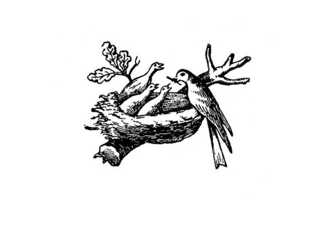 Любопытно, что сначала на эмблеме было трое птенцов, но маркетологи выяснили, что чаще всего в семьях бывает двое детей, а потому, если убрать одного птенца, логотип будет казаться ближе большему количеству матерей.
