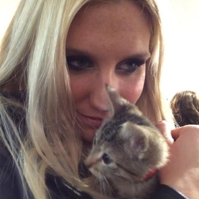 Кеша. Певица - счастливая обладательница кота по имени Мистер Пипс, у которого даже есть собственная страничка в твиттере.
