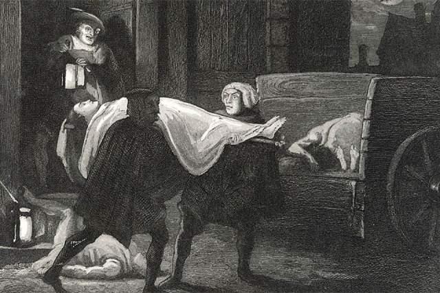 Однако, когда количество кошек значительно уменьшилось, эпидемия чумы разогрелась еще больше - потому что кошки как раз и были главными врагами настоящих распространителей чумы - крыс.