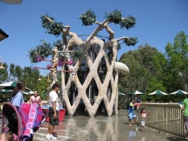Он посадил их в своем парке развлечений Gilroy Gardens в Гилрое, штат Калифорния.