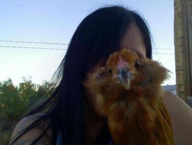 Курица, какая же ты курица...