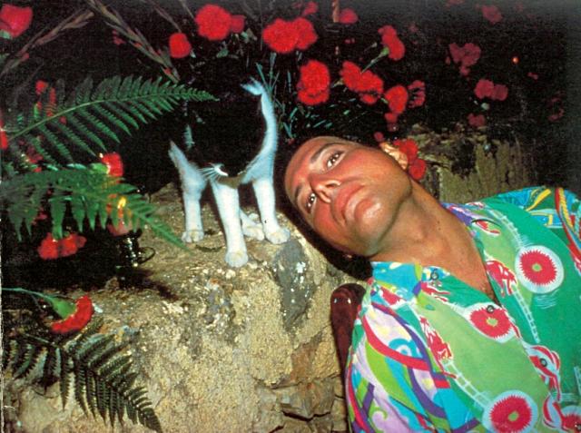 """На съемки клипа на песню """"These Are The Days Of Our Lives"""" Фредди надел подарок Дональда Макензи, свою любимую жилетку, на которой Дональд изобразил всех кошек Меркьюри, срисовав их с фотографий, предоставленных Джо Фанелли."""