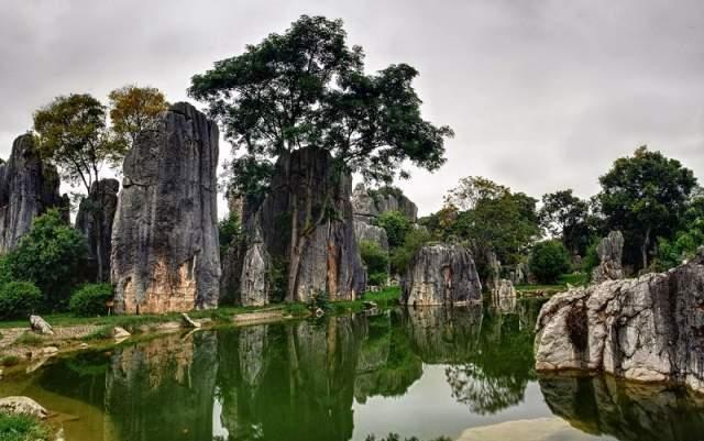 Каменный лес Шилинь, Китай. Он образовался из залежей известняка более 200 млн лет назад на месте высохшего моря.