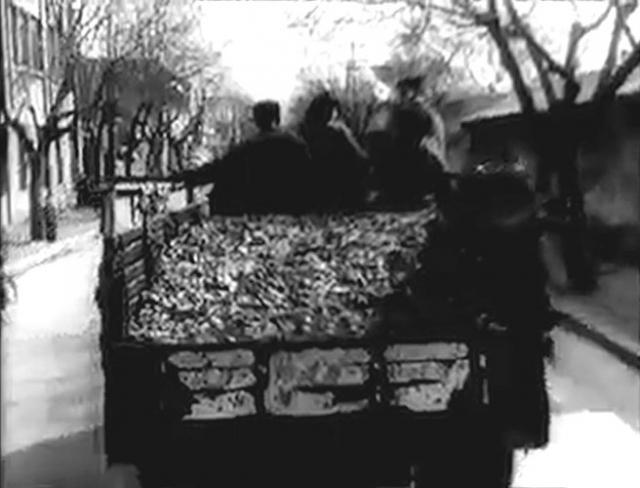 Напоказ выставлялись фотографии с горами мертвых воробьев высотой в несколько метров.