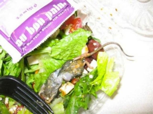 Женщина из Миннеаполиса нашла мышь в листьях салата Маu Bon Pain.
