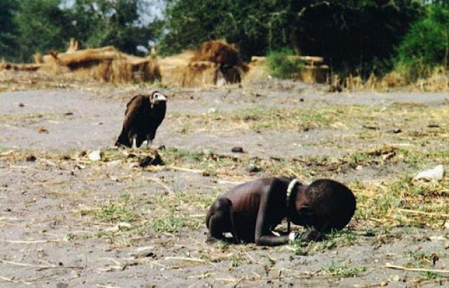 Автор фотографии - Кэвин Картер - получил Пулитцерскую премию в 1994 году за свою работу. На карточке изображена суданская девочка, согнувшаяся от голода. Скоро она умрет, и большой кондор на заднем плане уже готов к этому. Фотография шокировала весь цивилизованный мир.