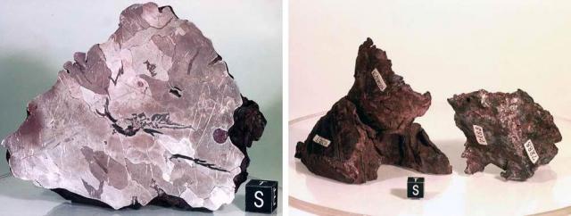 Предполагается, что масса метеорита в момент вхождения в атмосферу Земли составляла от 60 до 100 тонн. Крупнейший из найденных обломков весит 23 тонну и считается одним из десяти самых больших метеоритов мира.