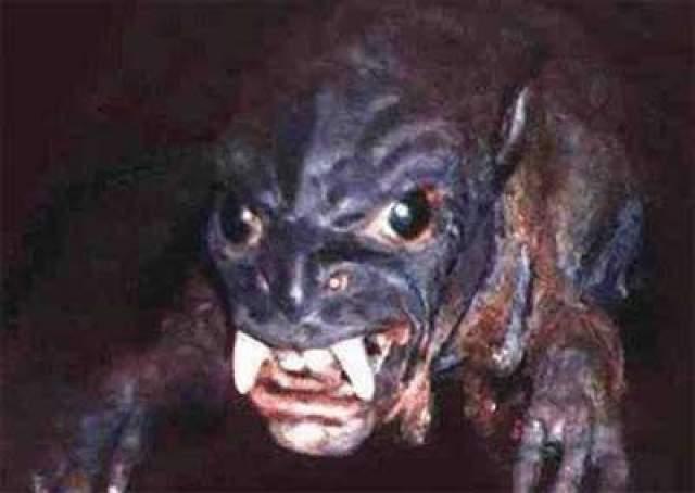 На морде явно просматриваются черты бабуина, а огромные глаза точь-в-точь такие, как у изображенных на картинках инопланетян.