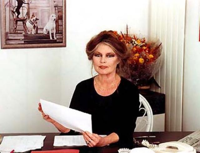 """С 1990-х годов Бриджит неоднократно выступала с критикой иммигрантов и ислама во Франции, гомосексуальности и межрасовых браков, в результате чего пять раз была осуждена """"за разжигание межнациональной розни""""."""