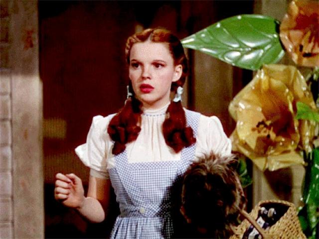 """Звездным часом Терри стала роль Тото в знаменитом """"Волшебнике страны Оз"""" с Джуди Гарленд. На момент съемок у собачки была повреждена лапка, однако это не отразилось на качестве ее игры."""