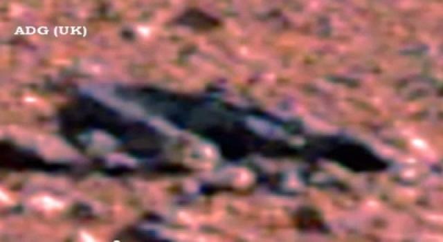 Некое существо, напоминающее не то змею, не то ящерицу...