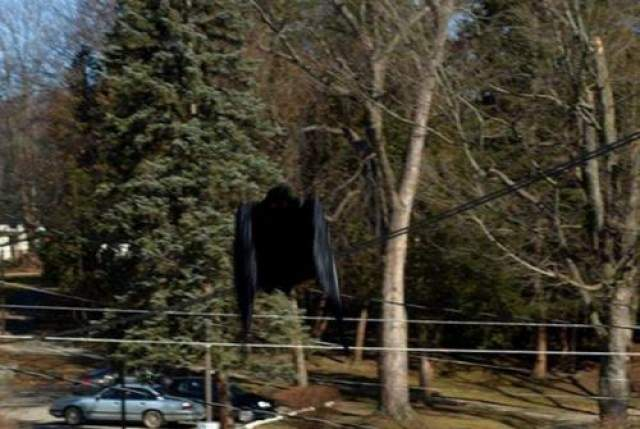 Человекоподобное летающее существо, замеченное Чили В 2013 году было получено странное сообщение от мужчины из Чили, заметившего странное летающее существо между деревьями в Парке Буштантэ в Сантьяго. Он описал это как необычный гибрид Бэтмена и Дракулы: крылья летучей мыши, клюв, полный острых как лезвия зубов, страшные когти и длинный закругленный на конце хвост.