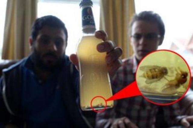 """Даниэль Бейли с омерзением обнаружил в своем любимом пиве мух. Мужчина утверждает, что он купил бутылку в одном из супермаркетов в Лейчестере (Великобритания): """"Я понял, что пиво на вкус не очень приятное, оно было теплым и соленым. Бутылка была какая-то мутная, а когда я посмотрел намного ближе, то понял, что в нем плавали мухи""""."""