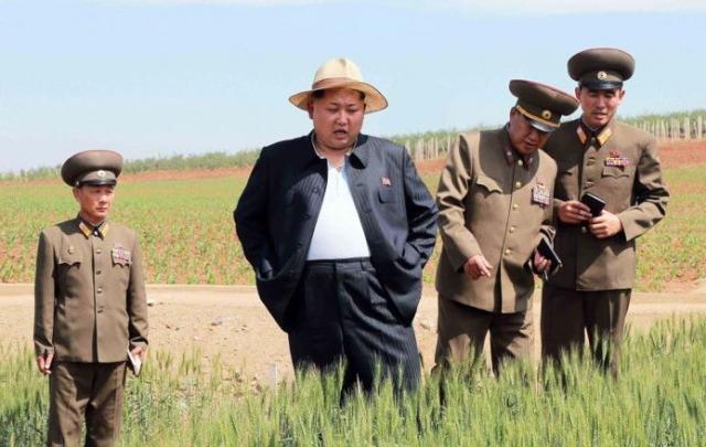 Многие СМИ отмечают, что внешний вид северокорейского лидера Ким Чен Ына таков, что он в любой одежде выглядит довольно забавно.