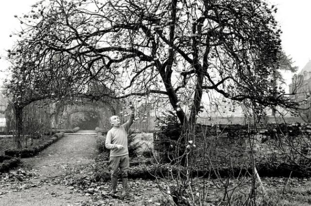 Луи де Фюнес был страстным цветоводом и садоводом и мог целыми днями работать в своей оранжерее.