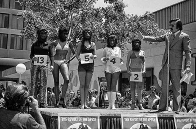 """Конурс """"Самая красивая обезьяна"""" . Опять США, на этот раз солнечная Калифорния. В 1972 году, приуроченный к выходу фильма """"Планета обезьян"""", состоялся этот интереснейший конкурс, в котором на красоток (?) нацепили обезьяньи маски."""