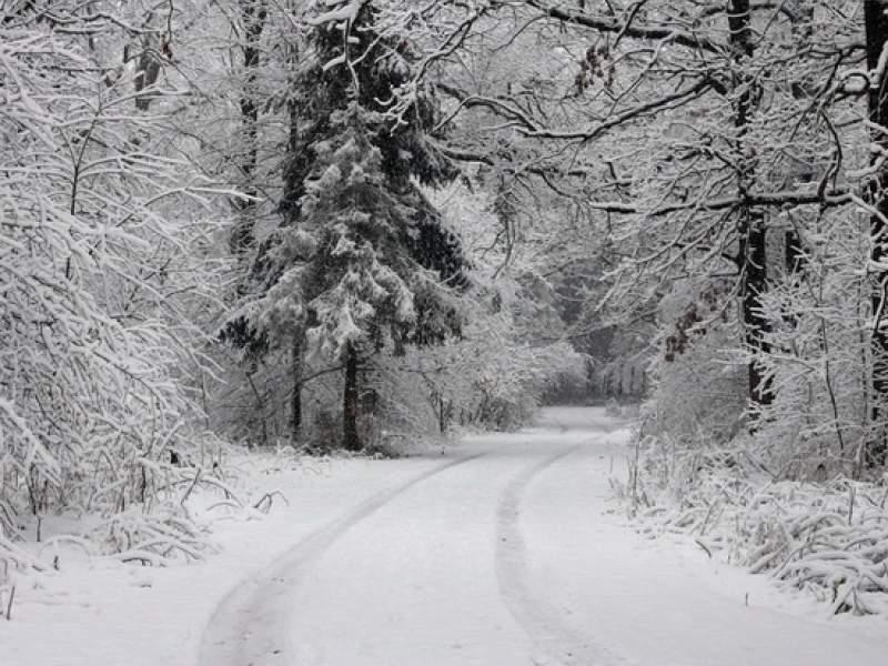 В декабре россиян ожидают погодные аномалии