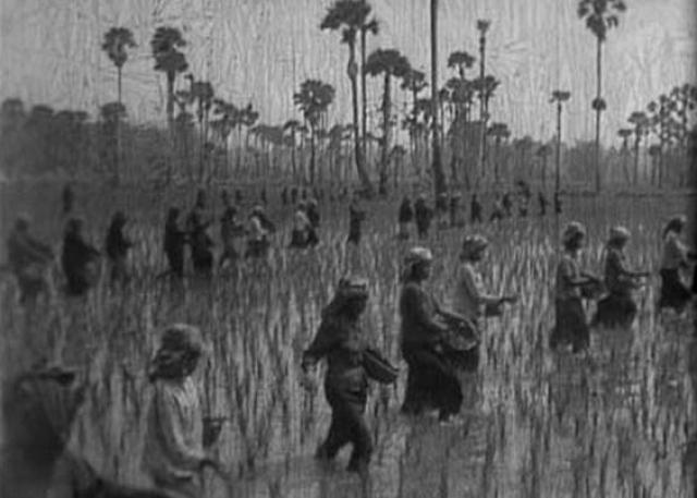 """Для выполнения """"невозможного"""" плана людей заставляли работать по двенадцать часов в день без перерывов, с жестким нормированием пищи, в страшных санитарных условиях. Естественно, люди умирали от голода, изнурения и болезней."""