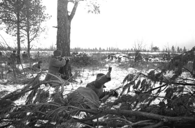 27 февраля 1943 года 2-й батальон получил задачу атаковать опорный пункт в районе деревни Чернушки. Как только советские солдаты прошли лес и вышли на опушку, они попали под сильный огонь противника.